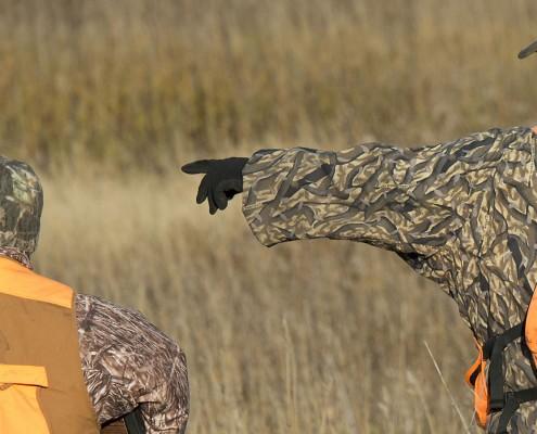 Pheasant-hunting